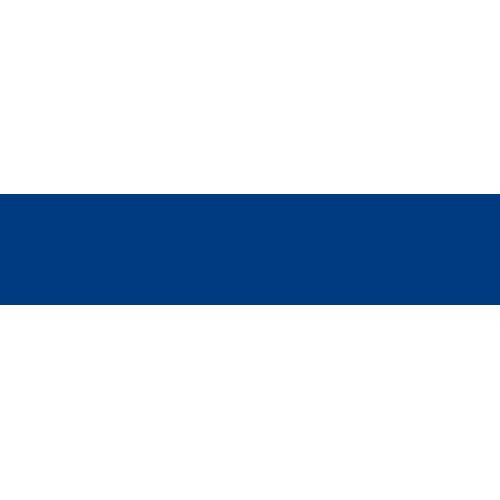 Cerchi auto IVECO
